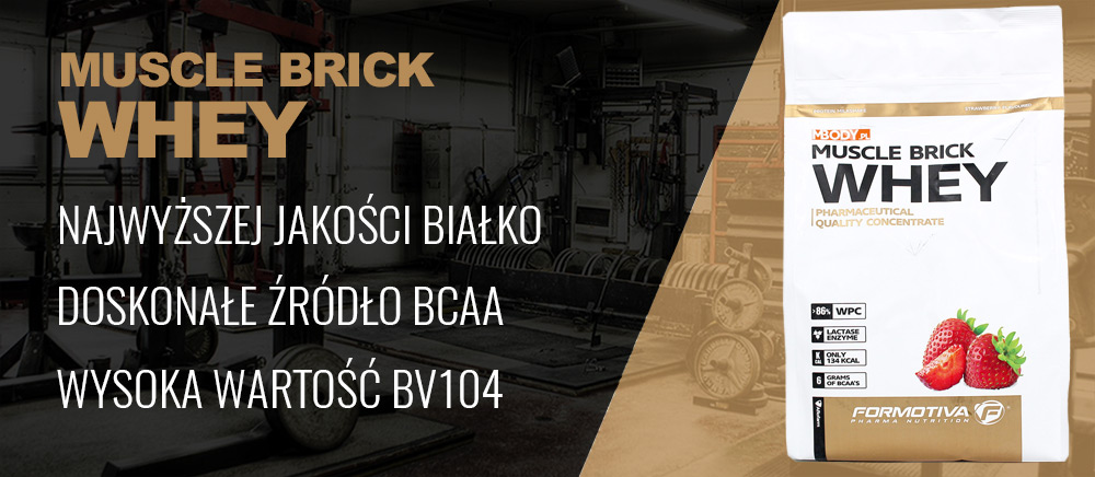 muscle brik whey banner